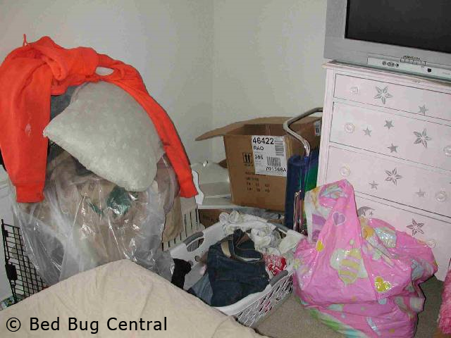 Hotel  Fifth Avenue New York Bed Bugs