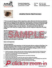 bed bug fact sheet