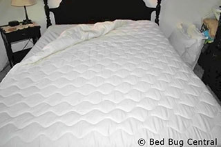 using a padded cover can protect your mattress encasement from stains