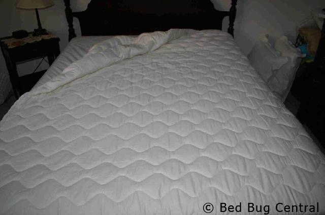 Bed Bugs 101 Mattress And Box Spring Encasements